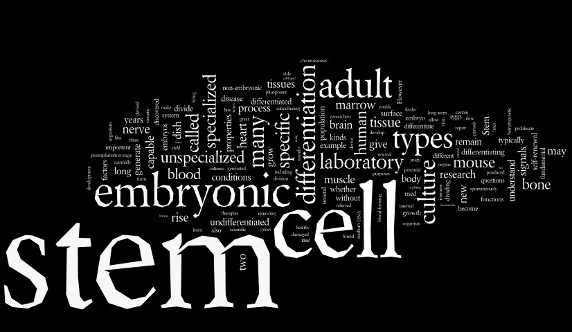Visual eloquency with Wordle word clouds – Crastina
